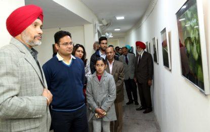 Photo-exhibition, titled 'Naturescape' at Art gallery, Kalagram, Manimajra, Chandigarh.