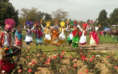Cultural Program by the artists from NZCC during Rose Festival at Chandigarh