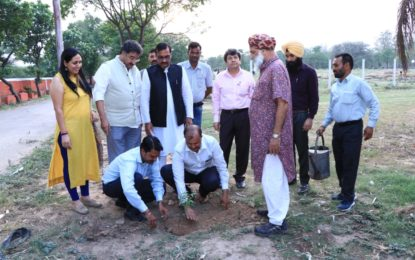 Tree Plantation on the occasion of World Environment Day by North Zone Cultural Centre, Patiala on June 5, 2018 at Kalagram, Chandigarh.